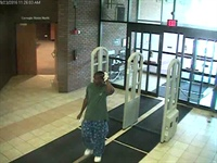 Theft of purse from library